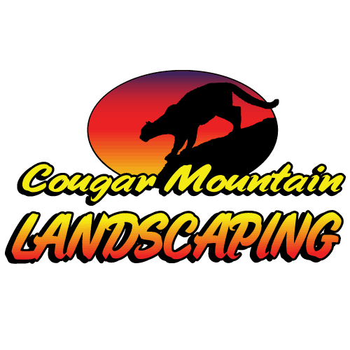 Cougar Mountain